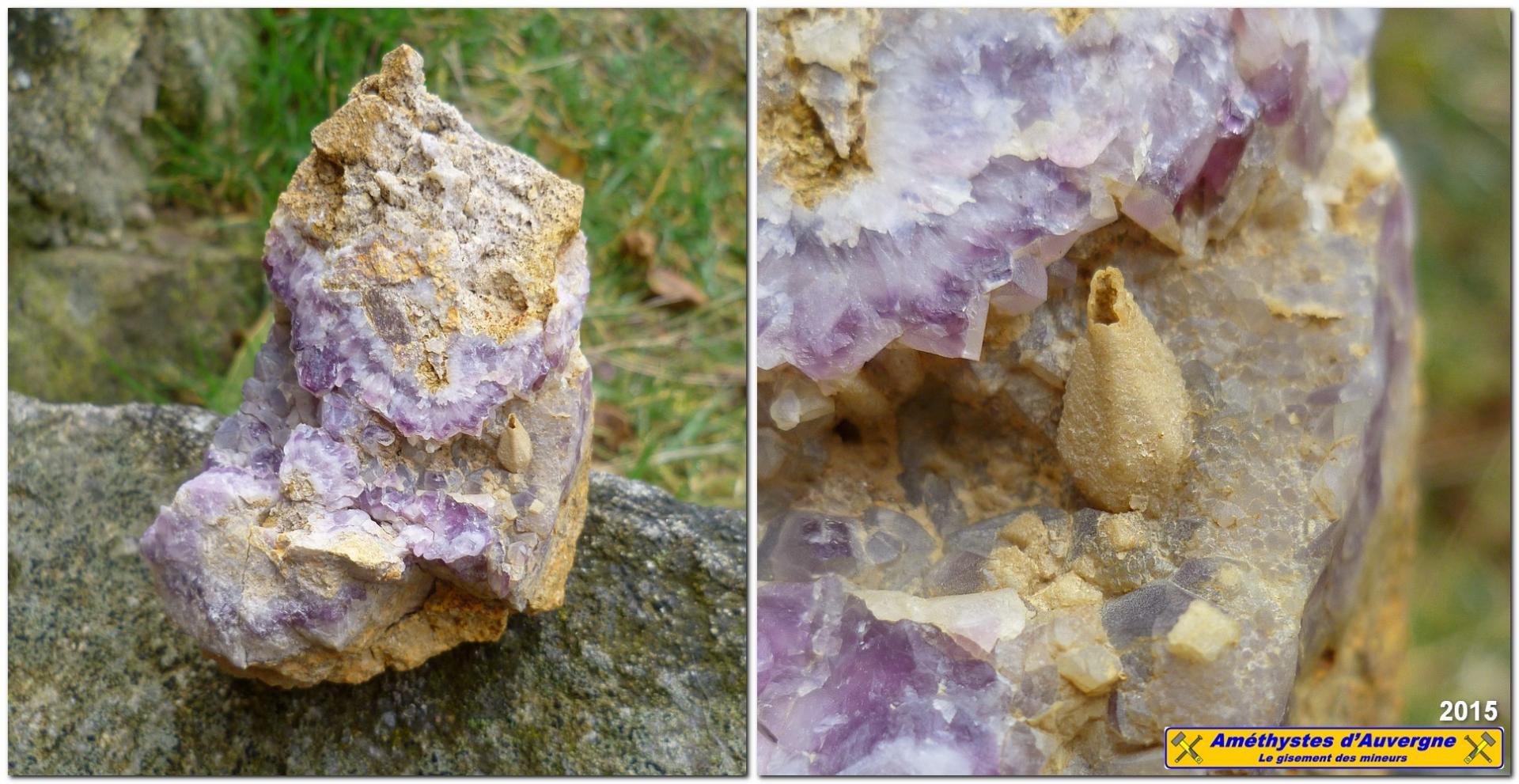 Pseudomorphose de calcite