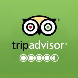 Trip advisor logo2